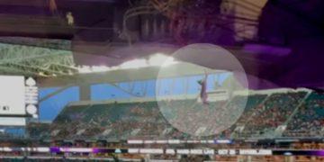 Gato se robó el show en pleno partido tras caer del techo de un estadio en pleno partido